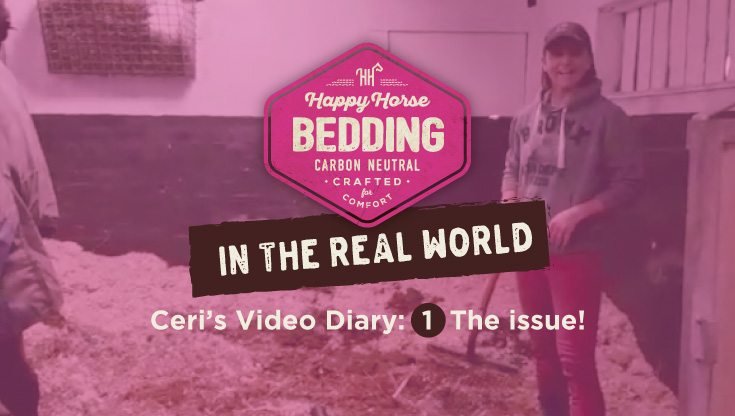 The Issue! Video 1: Happy Horse Bedding in the Real World