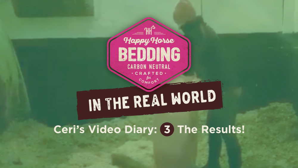The Results! Video 3: Happy Horse Bedding in the Real World
