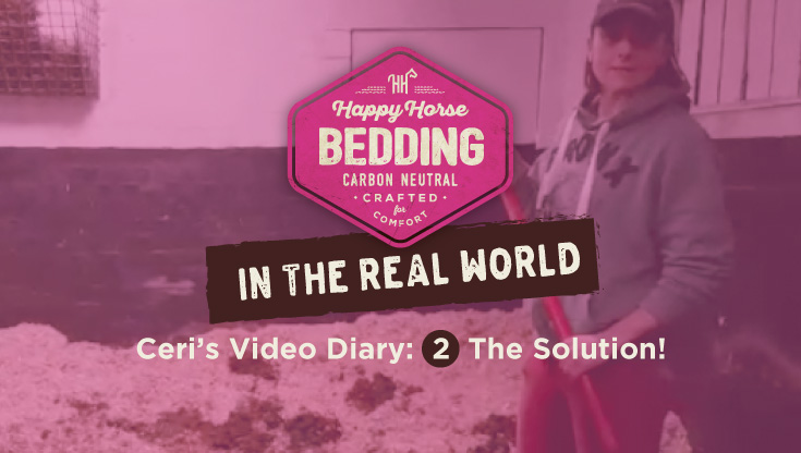 The Solution! Video 2: Happy Horse Bedding in the Real World