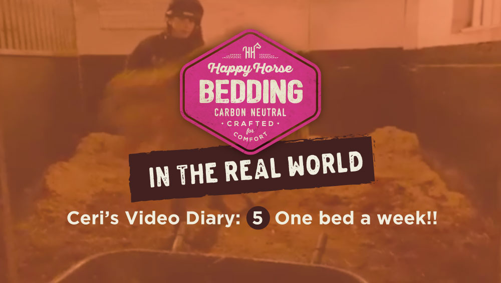 One Bed a week!: Video 5. Happy Horse Bedding in the Real World