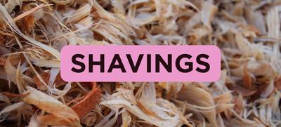 SHAVINGS_03
