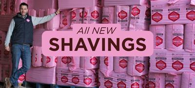 SHAVINGS_05