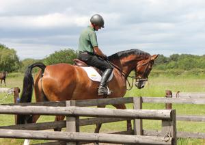 mark cramb riding