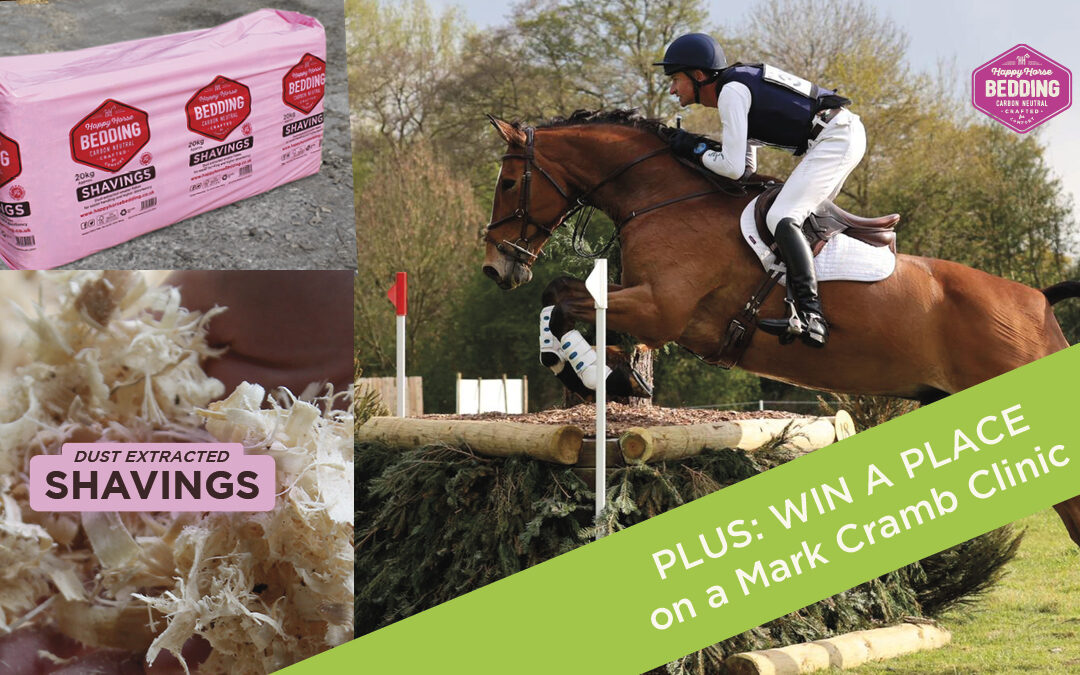Special offers for long term Happy Horse Bedding customers!